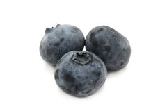 Three blueberries Stock Image