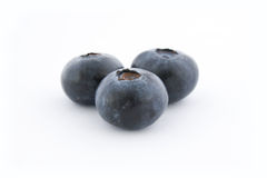 Three blueberries. Isolated on white background, with shadow Royalty Free Stock Photography