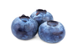 Three blueberries, isolated on a white background. Fresh, ripe, juicy and organic blueberries. Nutritious vitamins and berries. Stock Photography