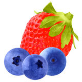 Three blueberries and one Strawberry isolated on white backgroun. Isolated fruits. Fruit blueberries isolated on white background as package design element royalty free stock photography