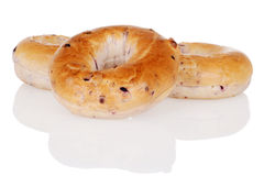 Three blueberry bagels Royalty Free Stock Image