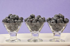 Three Blueberry Cups Stock Image