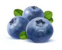 Three blueberry  on white background Stock Images