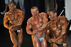 Three bodybuilding contestant showing their best in a line up Royalty Free Stock Photography