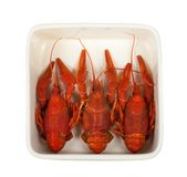 Three boiled crawfish in ceramic dish Royalty Free Stock Images