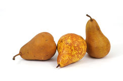 Three Bosc Pears Royalty Free Stock Photos