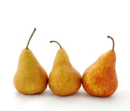 Three Bosc pears Royalty Free Stock Photography