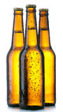 Three Bottle with beer and drops royalty free stock photos