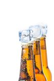Three bottle of fresh beer with ice and drops Royalty Free Stock Photos