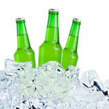 Three bottles of beer on ice. Royalty Free Stock Image