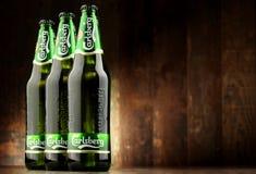 Three bottles of Carlsberg beer Royalty Free Stock Images