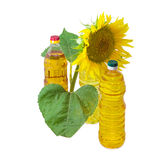 Three bottles of different sunflower oil and flower of sunflower stock photo