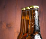 Three bottles of fresh beer with drops Stock Images