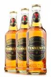 Three bottles ofTennents Whisky Oak beer Stock Photos