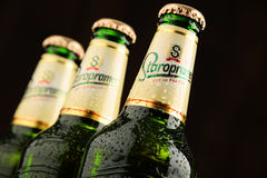 Three bottles of Staropramen beer Royalty Free Stock Image