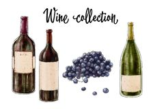 Three bottles of wine and grape cluster isolated on white background. Wine collection. Vector illustration. stock photos