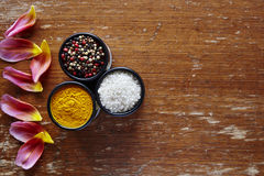Three bowl with variety of spices in kitchen atmosphere Stock Photos