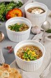 Three bowls of bean, quinoa soup and mushroom bulgur on a gray b Stock Photography