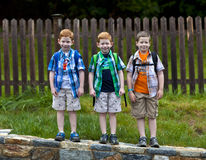 Three boys royalty free stock image