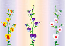 Three branches of violets Stock Photos