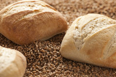 Three bread rolls Royalty Free Stock Image