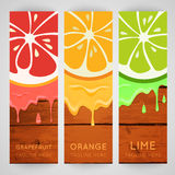 Three bright banner with stylized citrus fruit and splashes Stock Images