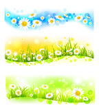 Three bright flower banners stock illustration