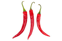 Three bright red chili peppers  Stock Image