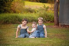 Three brothers country portrait Royalty Free Stock Photography