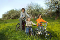 Three brothers ride bikes Royalty Free Stock Photography