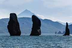 Three Brothers Rocks in Avacha Bay on background Vilyuchinsky Volcano. Kamchatka Stock Image
