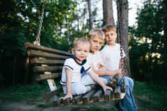 Three brothers sitting on swing Stock Photography