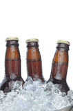 Three Brown Beer Bottles in Ice Stock Images