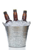 Three Brown Beer Bottles in Ice Bucket Stock Photo