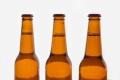 Three brown beer bottles Royalty Free Stock Photo