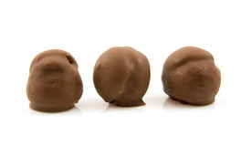 Three brown chocolate cream puffs in a row Stock Photo