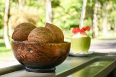Three brown coconuts in the wooden plate on the table. At the tropical bar Stock Photography