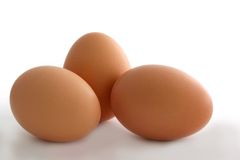 Three Brown Eggs. Isolated on white royalty free stock photo