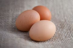 Three Brown Eggs on Burlap Stock Images