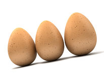 Three brown eggs Stock Images