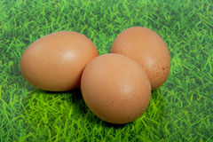 Three brown eggs on a green lawn Royalty Free Stock Image