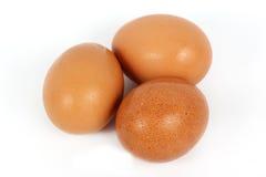 Three brown eggs Royalty Free Stock Photo