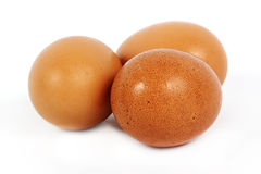 Three brown eggs Stock Image
