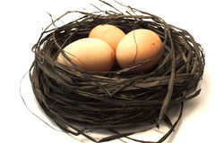 Three brown eggs in a nest Royalty Free Stock Photography