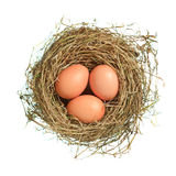 Three brown eggs in nest over white. Three brown eggs in hay nest isolated on white Royalty Free Stock Image