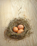 Three brown eggs on nest on wooden plate. Three brown eggs on hay nest on wooden plate Royalty Free Stock Photography