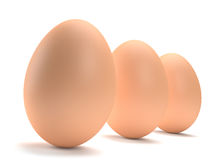 Three Eggs. Three brown eggs in a row isolated on white background. Computer generated image with multiple clipping paths Stock Images