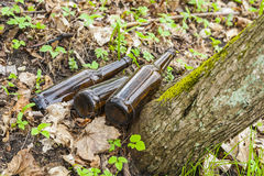 Three brown glass bottles in forest. Royalty Free Stock Photos