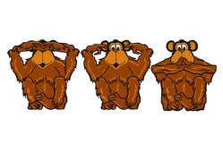 Three brown hairy monkeys. Illustration of three monkeys highlighting the saying, 'see no evil, hear no evil  speak (say)  no evil' one with eyes covered, one Royalty Free Stock Images