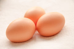 Three brown hens Eggs Royalty Free Stock Images